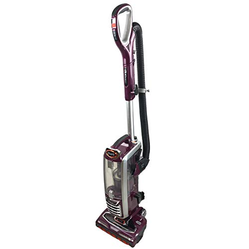 Shark DuoClean Technology Vacuum Cleaner NV801Q Powered Lift-Away Speed Upright with Pet Multi-Tool and Anti-Allergen Complete Seal Technology and HEPA Filter NV801QPR (Renewed) (Wine Purple)