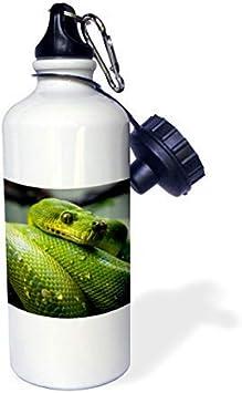 Bouteille De Voyage /à Motif De Serpent Bouteilles De Porte-Cl/éS Vides Rechargeables Motif Serpent argent/é Contenants Portables De Compression Bouteille De Compression Portable,