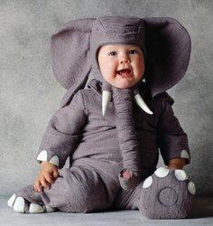 Tom Arma Elephant 18-24 Months ()