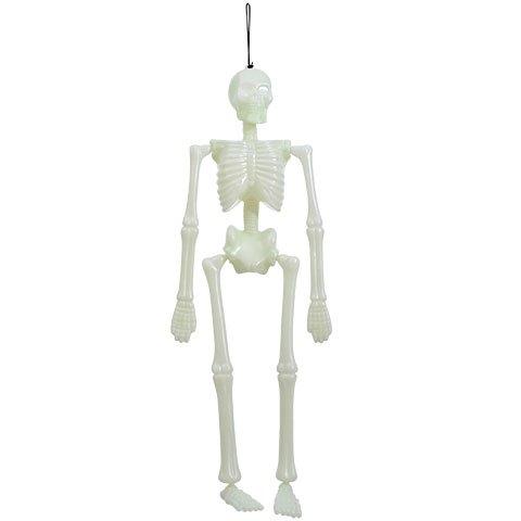 Glow in the Dark Skeleton Halloween Decoration (Alex Smith Halloween Costume)