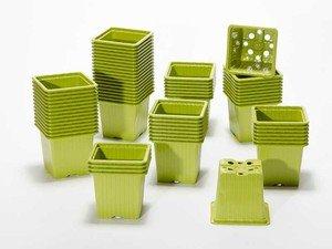 GODET CARRE 8 x 8 x 7 cm vert bambou (x 50)