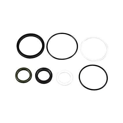 Amazon com: Hydraulic Tilt Cylinder Seal Repair Kit For