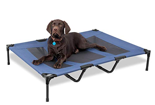 Internet's Best Dog Cot | 48 x 36 | Elevated Dog Bed | Cool Breathable Mesh | Indoor or Outdoor Use | Raised Lifted Platform| Keeps Your Dog Cool | Large | Blue