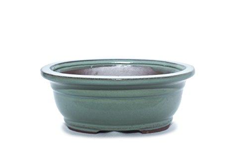 Bonsai Tree Pot 4 Inch Light blue Glazed Rectangle Shape ()