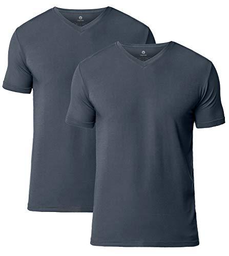 Lapasa Mens 2-Pack Micro Modal QUICK DRYING T-shirt V-Neck Short Sleeve Undershirt, Gray, Medium/Chest 38-40 Inches