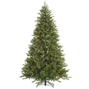 7' X 50 Nevada Pine Tree 1460t 500cl