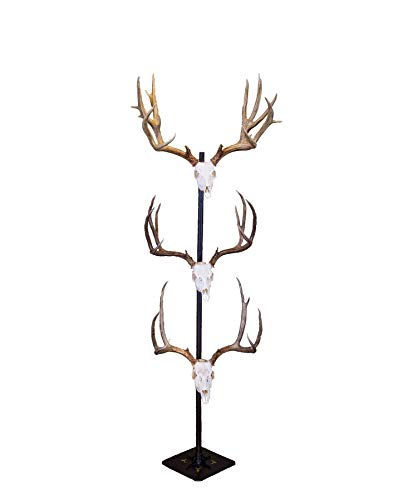 Skull Hooker Trophy Tree European Trophy Mount - Hang up to 5 Taxidermy Deer Antlers and other Skulls for Display - Graphite Black from Skull Hooker