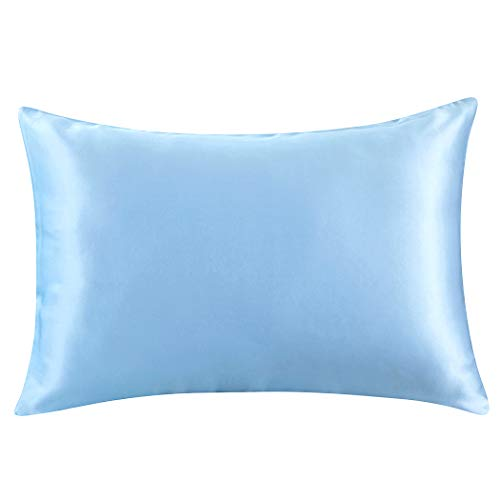 ZIMASILK 100% Mulberry Silk Pillowcase for Hair and Skin Health,Both Side 19 Momme Silk,1pc (Standard20''x26', Light Blue)