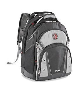 Swiss gear Synergy Laptop BackPack