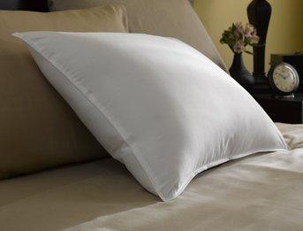Restful Nights Trillium Standard Size 2-Pillow Set With 2 Standard Size Pillowtex Pillow Protectors