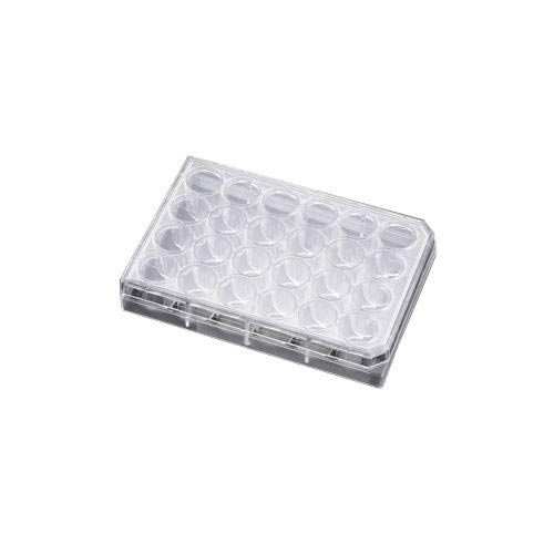 BD 353504 Falcon Clear Polystyrene Sterile Cell Culture Insert Companion Plate with Lid, For 24 Well Plate (Case of 500)