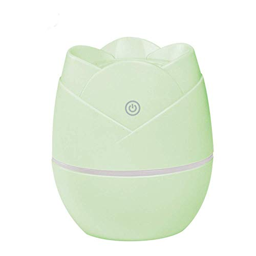 WRYCN Multi-Functional Portable Air Humidifier,Creative Round Rose Car Humidifier,for Home Bedroom Office Travel,Green
