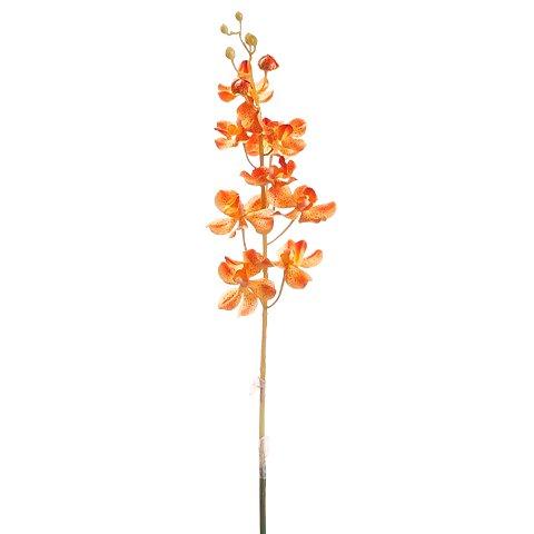 "30"" Vanda Orchid Spray Two Tone Orange (Pack of 12)"