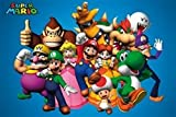 Nintendo Super Mario Brothers Wii Video Game Poster (24 x 36 inches)