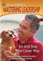 Cesar Millan's Sit and Stay the Cesar Way: Vol. 4 Mastering Leadership Series by Cesar Millan Inc.