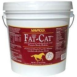 Equine Fat-Cat Body Builder, 10 Lb