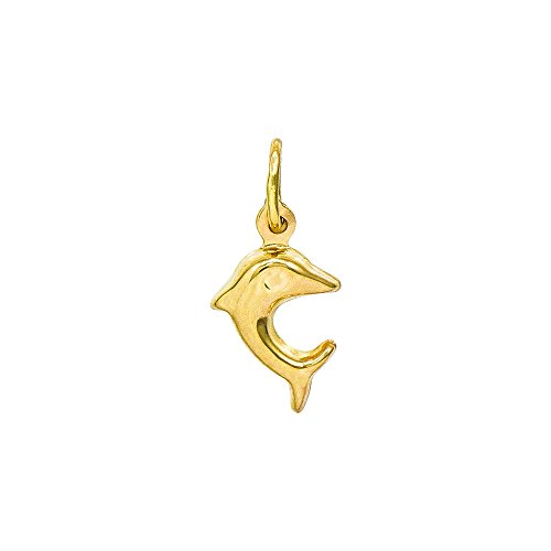 14K Yellow Gold Dolphin Charm Pendant, 0.53 Inches