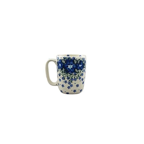 Boleslawiec Style Pottery Hand Painted Polish Ceramic Szwed Mug 058-U-420