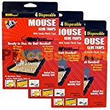 Buy rated mouse traps