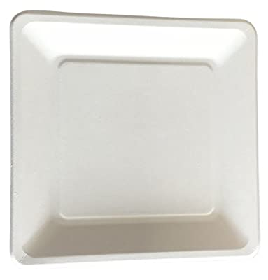 "CaterEco 612409799289 [800 Count] Bagasse 6"" Square Plate (Pack of 800)"