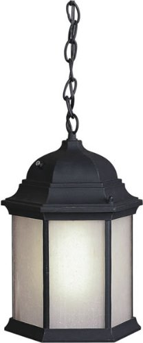 Forte Lighting 17011-01-04 Traditional 1-Light Energy Efficient Exterior Hanging Lantern with Frosted Seeded Glass, Black Finish - 4 Light Exterior Hanging Lantern