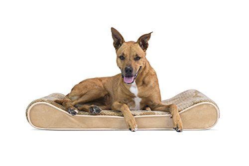 Furhaven Pet Dog Bed | Orthopedic Minky Plush & Velvet Ergonomic Luxe Lounger Cradle Mattress Contour Pet Bed w/ Removable Cover for Dogs & Cats, Camel, Large