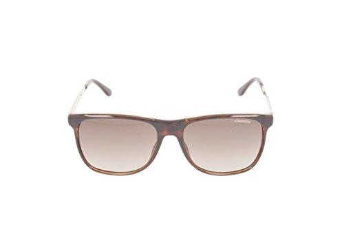 6011 Light Gold Havana sol S Rectangulares Gafas de Carrera xIUTfw
