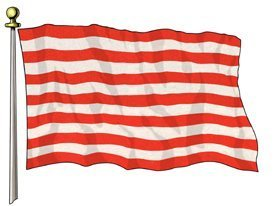 Flag: U.S. Sons of Liberty Historical Flag 3'x5′ Super Poly Outside Flag / Banner by Flags Importer Review