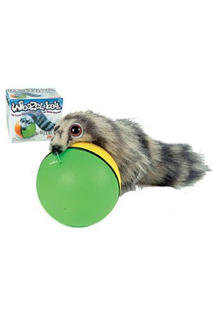 Westminister Weazel Ball – The Weasel Rolls with Ball