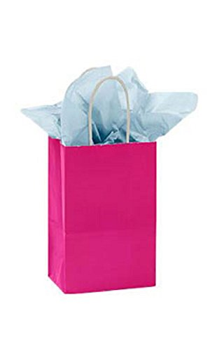 Small Glossy Cerise Paper Shopping Bags - Pack of 100 by STORE001