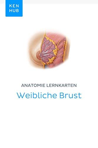 Anatomie Lernkarten: Weibliche Brust: Lerne alle Organe, Arterien ...