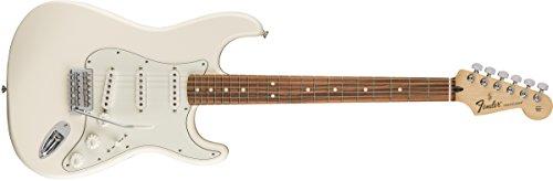 Fender 6 String Standard Stratocaster Electric Guitar-PAU Ferro Fingerboard, Arctic White (144603580