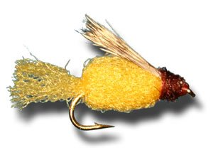 sparkle-caddis-pupa-amber-fly-fishing-fly-size-14-3-pack