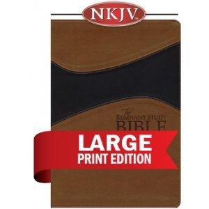 Read Online Remnant Study Bible NKJV Large Print (Leathersoft Brown/Black) (New King James Version) ebook