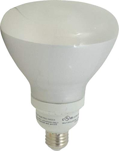 (Value Collection - 1,090 Lumen, R40, Flood, Spot, Fluorescent Light Bulb (4 Pack))
