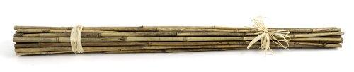 Super Moss (12383) Bamboo Sticks, Natural, 24 (25 pack)