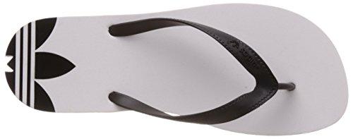 Adidas Adi Sun D65627, Tongs et Nu-pieds Homme