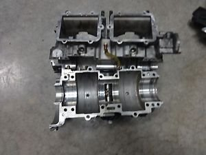 New OEM Polaris Crankcase #2203321