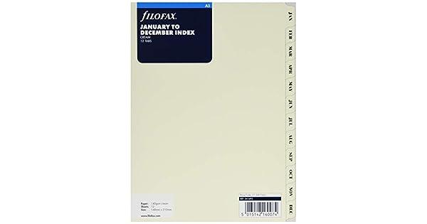 Amazon.com: Filofax – Recambio de hojas para agenda (A5 Jan ...