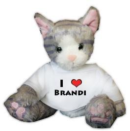 Amazon.com: Gris de gato de peluche juguete con I Love ...