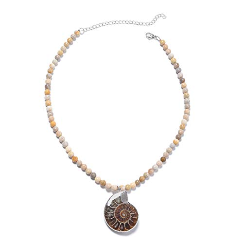 Shop LC Delivering Joy Fossil Coral Ammonite Pendant with Beads Necklace - Bead Ammonite Pendant Fossil