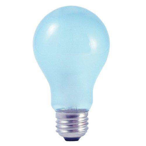 Daylight Full Spectrum Light Bulb - 6