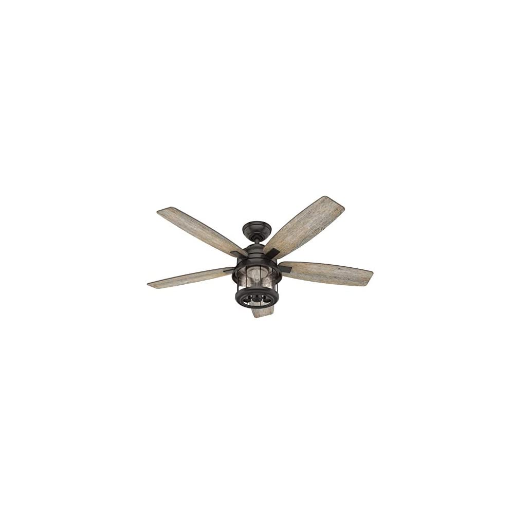 Hunter Fan Company 59420 Coral Bay Indoor/Outdoor Ceiling Fan with LED Light and Remote, 52, Bronze/Brown