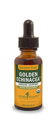 Herb Pharm Alcohol-Free Golden Echinacea Glycerite for Immune System Support - 1 Ounce