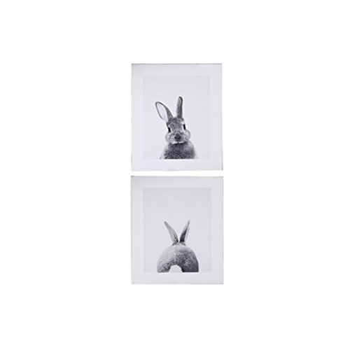 Cuawan Rabbit Tail Canvas Art Print Poster Bunny Canvas Painting Nordic Wall Decor (9.84in 7.87in)