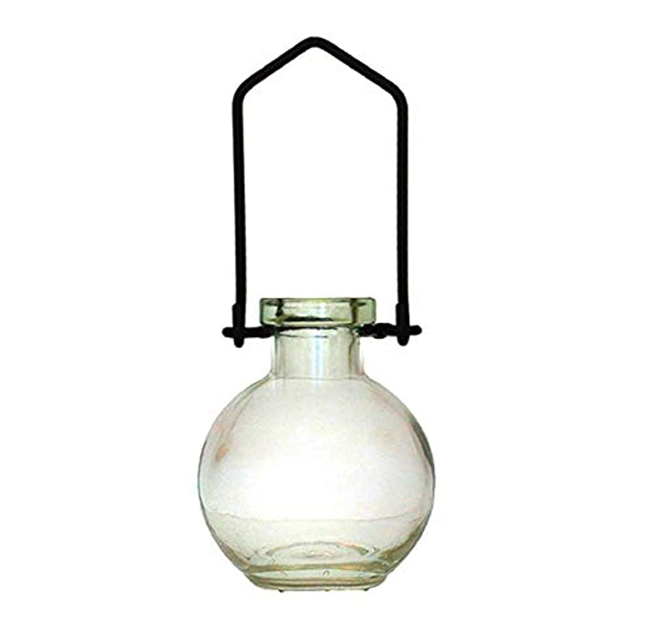 偽善者望ましい宣言装飾用吊り下げ花瓶 小型のガラスボトル 寮の飾り カラフルなお香立て 壁掛け装飾 ロマンチックな装飾 クリア G268VF