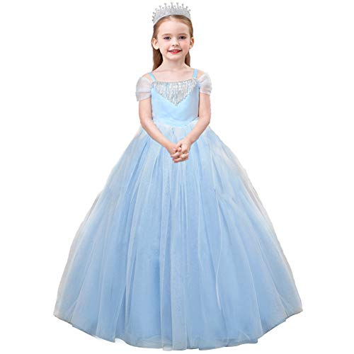 Cinderella Costumes Blue Pageant Dresses Little Girls Puffy Tulle Princess Ball Gown Kids Birthday Halloween ()