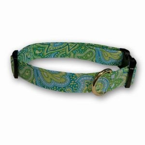 Great Elmou0027s Closet Dog Collar   Borano