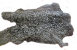 Natural Gray Grey Top Grade Rabbit Fur Pelt Skin Taxidermy