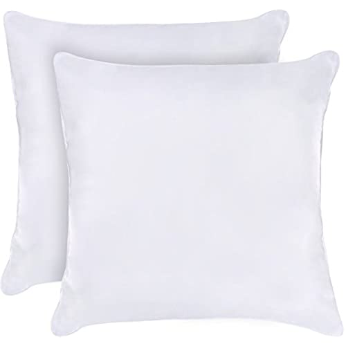Small Decorative Throw Pillows Amazon Classy Small Decorative Throw Pillows